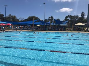 St Dominic's Faction Swimming Carnival Information and Online Event Selection Form