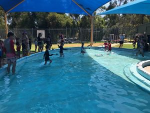 St Dominic's Junior Tabloid Swimming Carnival Information and Volunteer Form