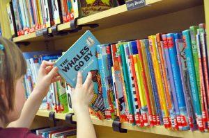 Seeking Library Volunteers - Can you help?