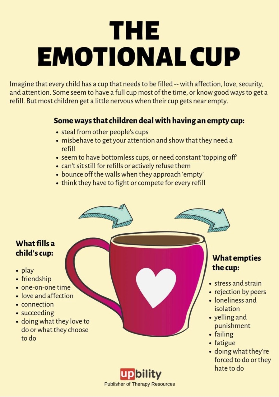 The Emotional Cup Theory - A Message from our School Councillor