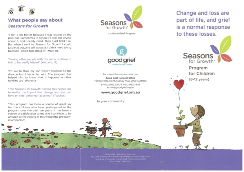 Year 2 and 3 Seasons for Growth Program in Term 3